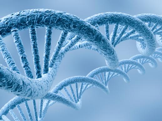 Bild von DNA
