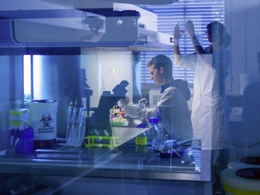 Philosophisch-naturwissenschaftliche Fakultät: Bachelor Biochemie ...